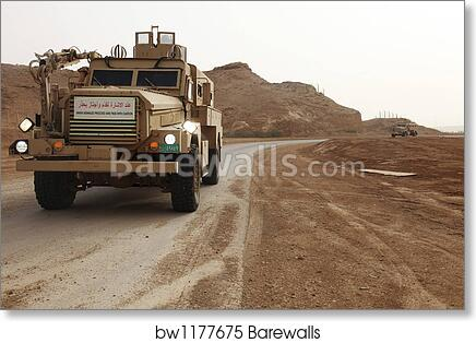 Cougar armored fighting vehicles in Iraq  by Stocktrek Images art print  poster