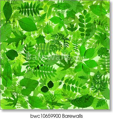 Abstract Green Leaves Background Art Print Poster