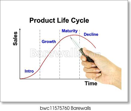 Art Print Of A Pen Pointer Product Life Cycle Chart Barewalls