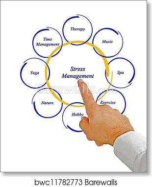 Art Print Of Diagram Of Stress Management Barewalls Posters