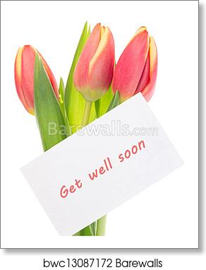 Art print of pink and yellow tulips with get well soon greeting art print of pink and yellow tulips with get well soon greeting m4hsunfo