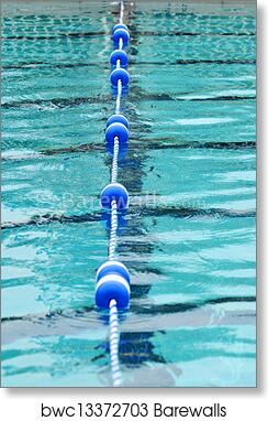 Swimming Pool With Lane Divider art print poster