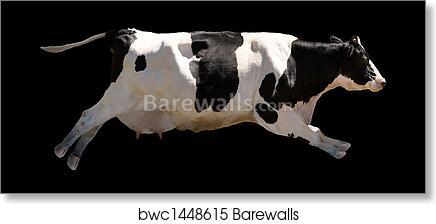 Art Print Of Flying Cow Barewalls Posters Prints Bwc1448615