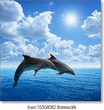 Jumping Dolphin and Sunset Over Sea Poster Print Home Art Decoration Pictures