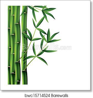 vector bamboo branches art print barewalls posters prints bwc15714524 vector bamboo branches art print poster