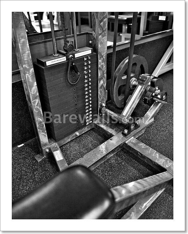 Gym Exercise Equipment - Weight Art/Canvas Print. Poster ...