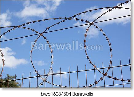 Dorable Barbed Wire Band Greenville Illustration - Electrical ...