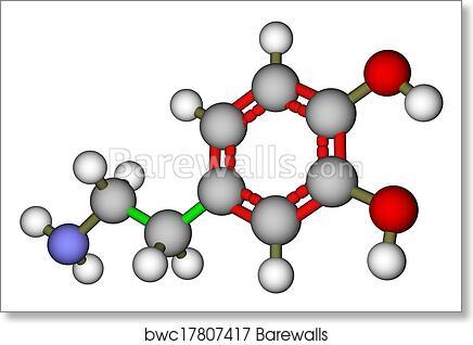 art print of dopamine molecular structure barewalls posters