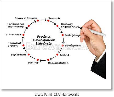 Art Print Of Product Development Life Cycle Barewalls Posters