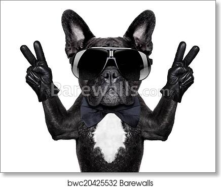 Cool Bulldog Art