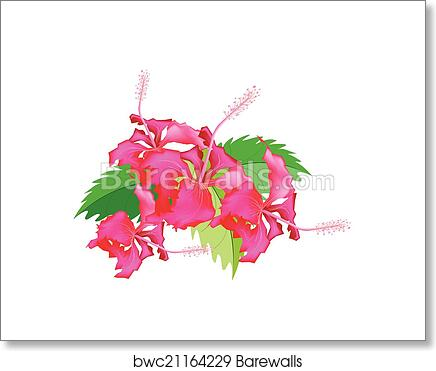 Art print of a stack of fresh red hibiscus flowers barewalls art print of a stack of fresh red hibiscus flowers ccuart Gallery