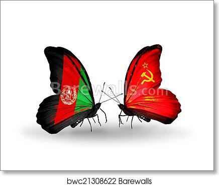 Two Butterflies With Flags On Wings As Symbol Of Relations Afghanistan And Soviet Union Art Print Barewalls Posters Prints Bwc21308622