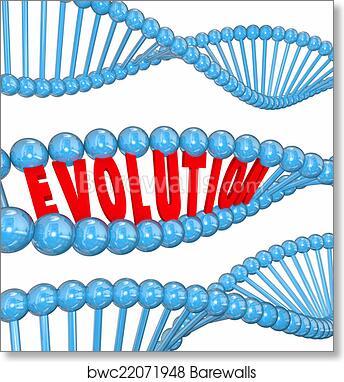 Art Print Of Evolution Word Letters Dna Strand Family Ancestors