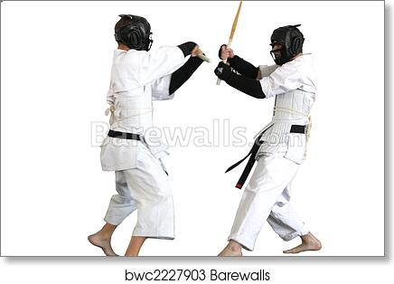 art print of karate fight barewalls posters prints bwc2227903