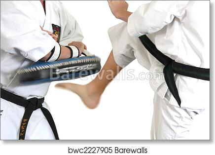 art print of karate fight kumite barewalls posters prints