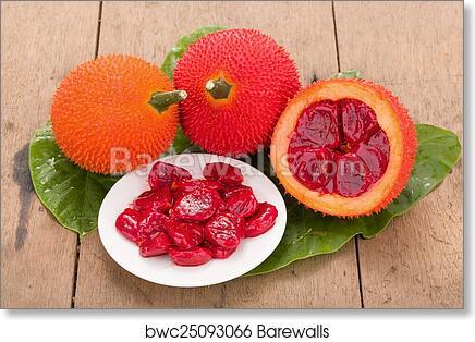Baby Jackfruit Pictures