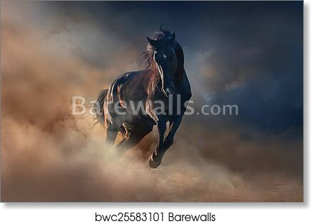 HUNGARIAN HORSES RACING POSTER PRINT 24x36 HI RES