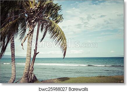 Kaanapali Beach Maui Hawaii Tourist Destination Art Print Poster