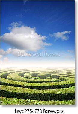 Hedge maze problem solving art print poster