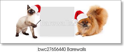 Christmas Dog And Cat Holding Up Banner Art Print Barewalls Posters Prints Bwc27656440