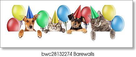 Birthday Cat And Dog Banner Art Print Barewalls Posters Prints Bwc28132274