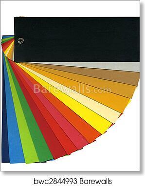 Art Print Of Pantone Color Scheme Barewalls Posters Prints