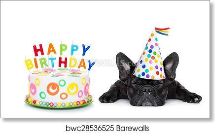 Happy Birthday Sleeping Dog Art Print