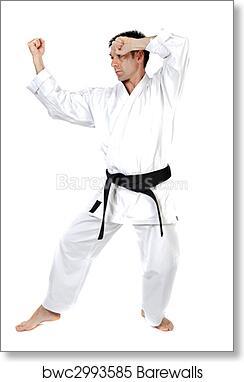 Martial Arts Stance Art Print Barewalls Posters Prints Bwc2993585