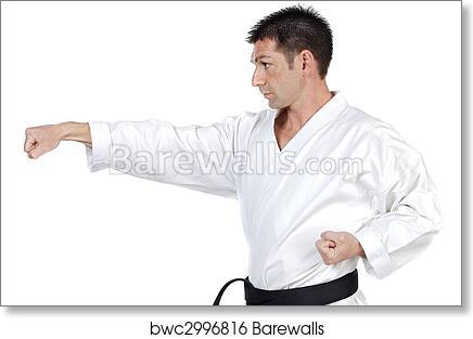 Martial Arts Stance Art Print Barewalls Posters Prints Bwc2996816