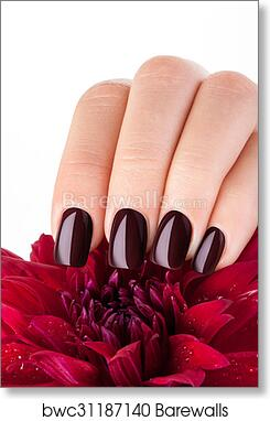 Art Print Of Dark Red Nail Polish