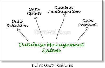 Art print of diagram of database management system barewalls art print of diagram of database management system barewalls posters prints bwc32885721 ccuart Images