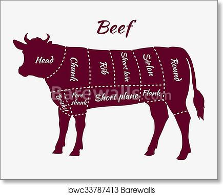 Cuts Of Beef Diagram | Art Print Of Scheme Of Beef Cuts For Steak And Roast Barewalls
