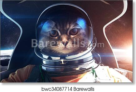 Art Print Of Brave Cat Astronaut In The Spaceship Cabin This Image