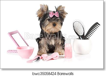 Yorkshire Terrier With Grooming Products Art Print Barewalls