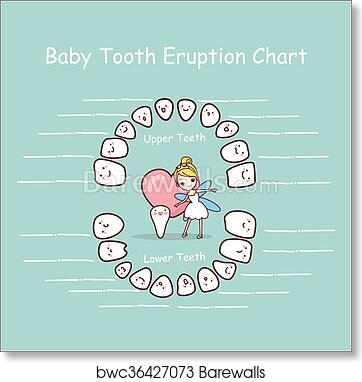 image about Baby Tooth Chart Printable identified as Little one enamel chart eruption historical past artwork print poster