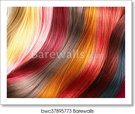 Hair Colors Palette Dyed Color