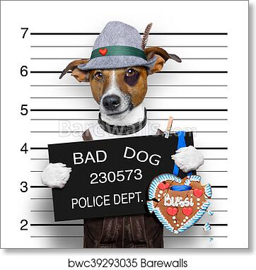 Jack Russell Dog Mugshot Police Bad Photo Art Picture Canvas Print