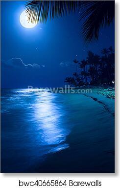 Art Moonlight Tropical Sea Beach Night Vacation At The Palms Resort Art Print Poster
