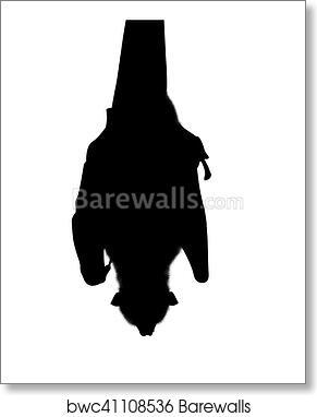 art print of silhouette bat hanging barewalls posters prints