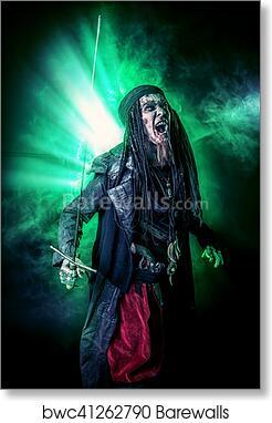Fantasy Pirate Art Print Poster