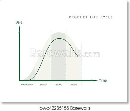 Art Print Of Marketing Concept Of Product Life Cycle Diagram Chart