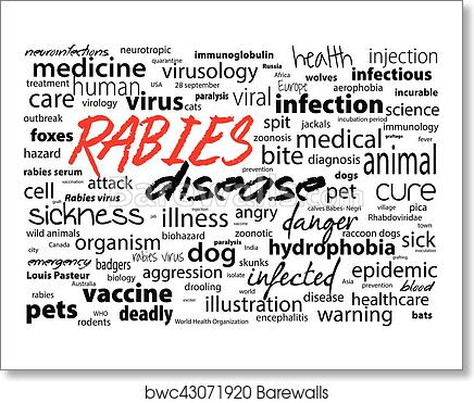 Rabies - viral incurable disease of humans and animals  Health care word  text block  art print poster