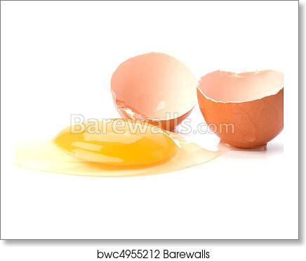 Broken Egg Isolated On White Background Art Print Poster