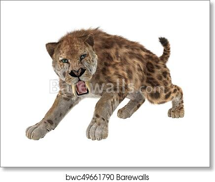 Art Print Of 3D Rendering Saber Tooth Tiger On White