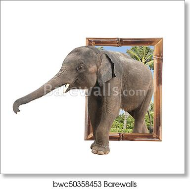 Art Print of Baby elephant in bamboo frame with 3d effect ...