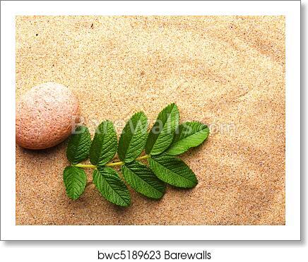 Art Print of Zen garden | Barewalls Posters & Prints | bwc5189623