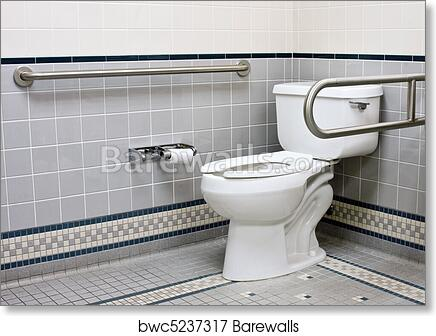 Art Print Of Stainless Support Bars In Handicap Bathroom