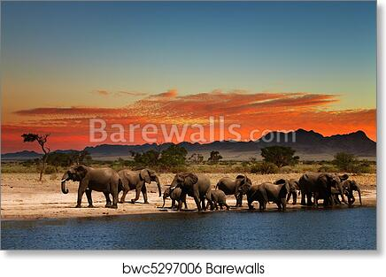 Wall Art Canvas Picture Print Herd of Elephants in African Savanna 3.2