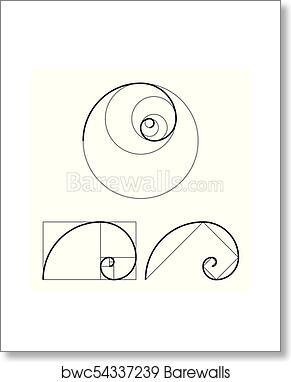 art print of golden ratio template set proportion symbol graphic