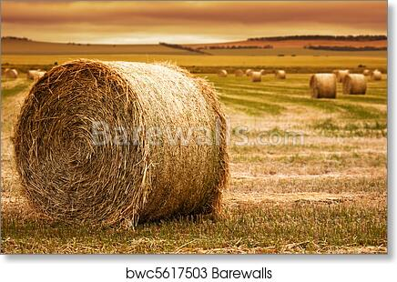 FARMERS FIELD AND SKY LANDSCAPE POSTER PRINT 24x36 HI RES 9 MIL PAPER